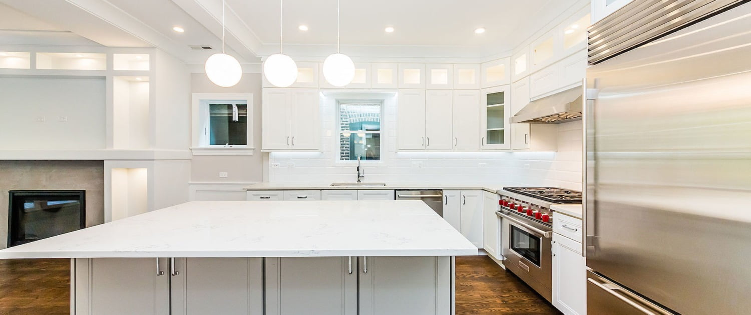 modern kitchen remodel stainless steel appliances custom cabinets lakeview lincoln park chicago il